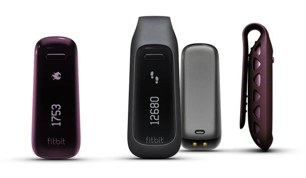 Get Fit with the Help of a FitBit