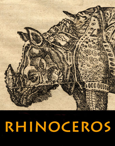 """Rhinoceros"" Has Been Set Loose in the LES"