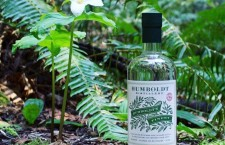 Cannabis-Infused Vodka Hits the Market!